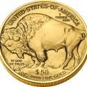 2008 American Buffalo Bullion Reverse